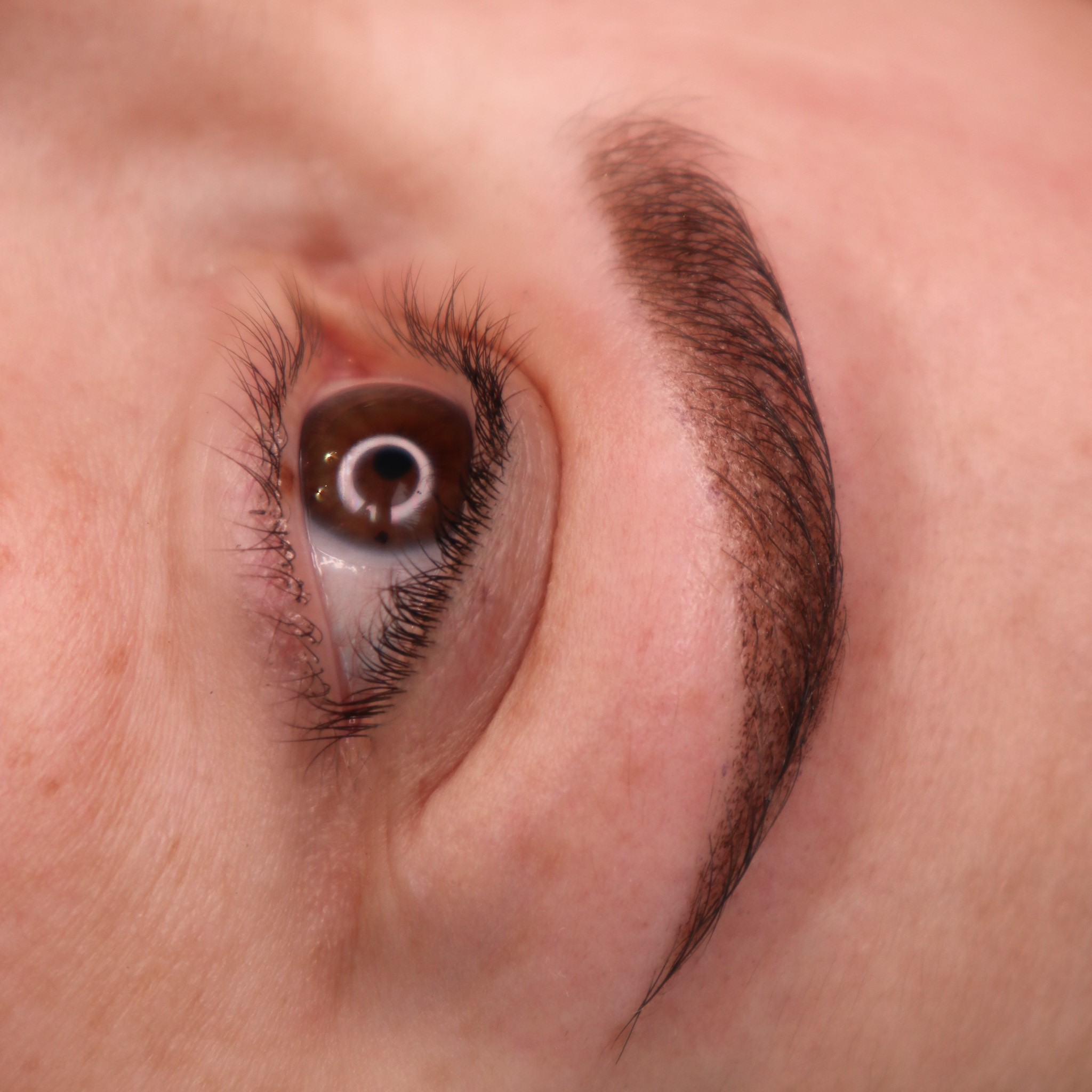 brown hair ombre brows after