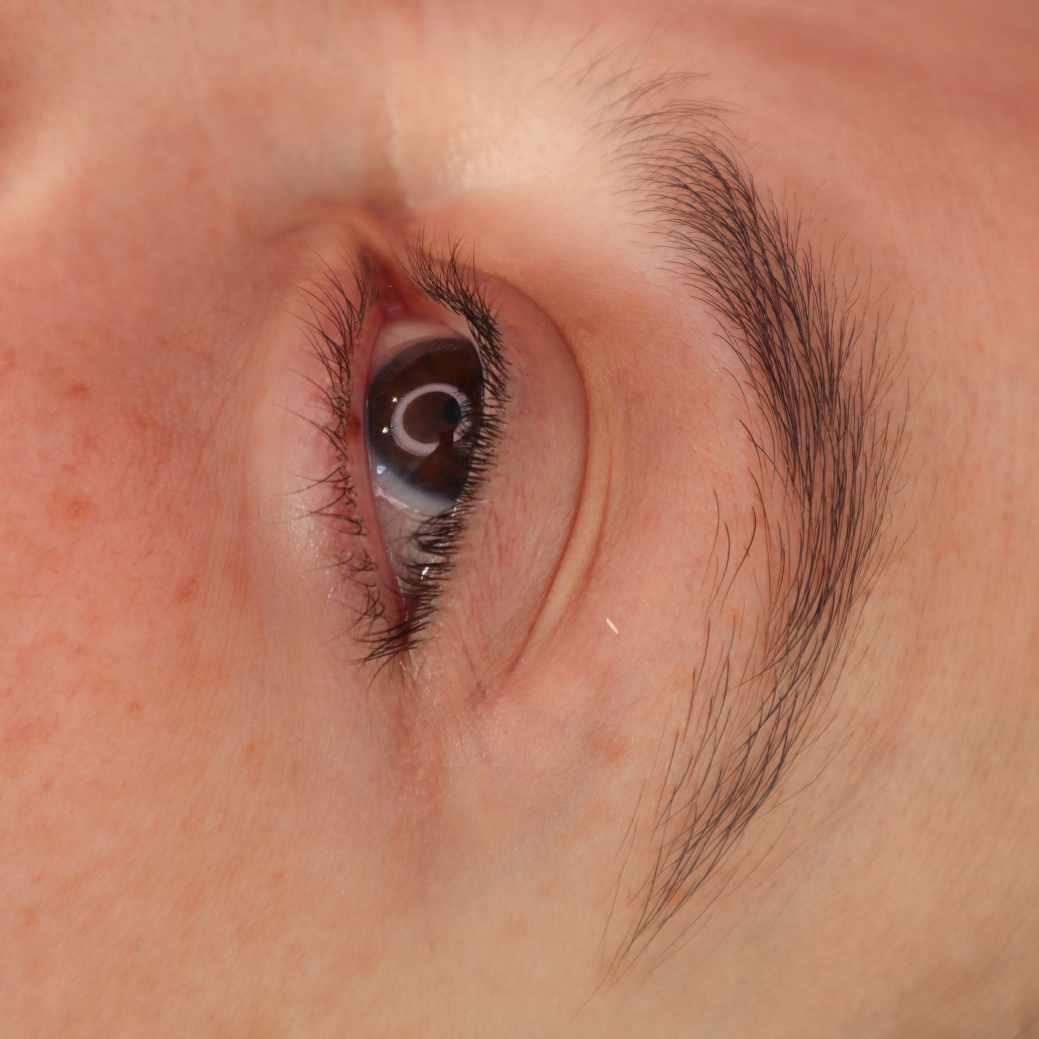 brown hair ombre brows before