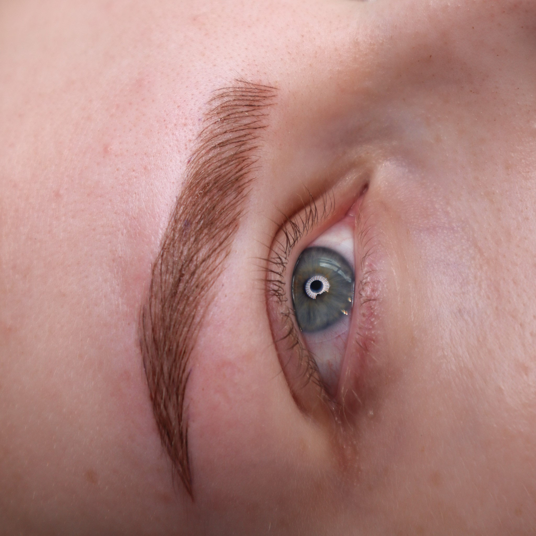 red hair ombre brows after